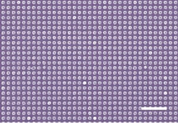 纳米级激光印刷技术 分辨率达127000DPI